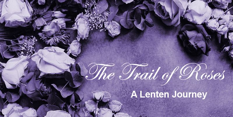 The Trail of Roses: A Lenten Journey with Jesus